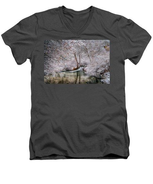 Frosty Pond Men's V-Neck T-Shirt