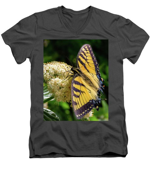 Fuzzy Butterfly Men's V-Neck T-Shirt