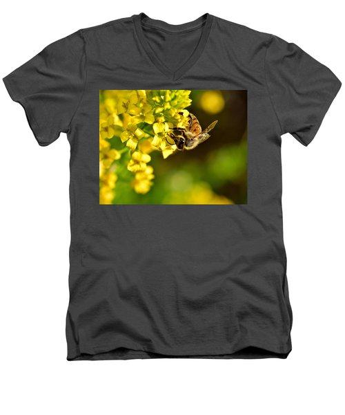 Gathering Pollen Men's V-Neck T-Shirt
