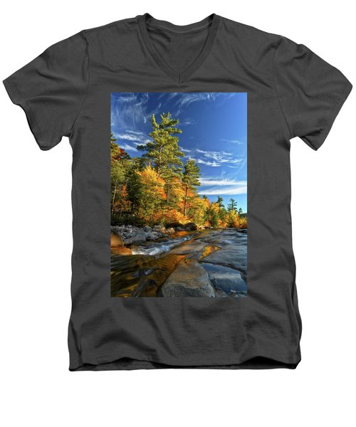 Golden Autumn Light Nh Men's V-Neck T-Shirt