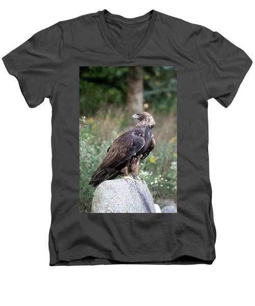 Golden Eagle On Rock 92515 Men's V-Neck T-Shirt