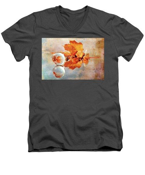 Men's V-Neck T-Shirt featuring the photograph Golden Tones Of Fall by Randi Grace Nilsberg