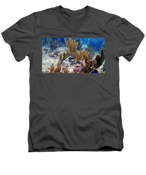 Gorgonian Parrotfish Men's V-Neck T-Shirt