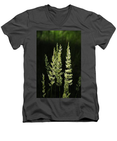 Grasses Men's V-Neck T-Shirt