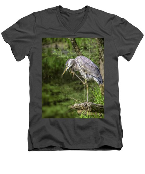 Great Blue Heron Itch Men's V-Neck T-Shirt