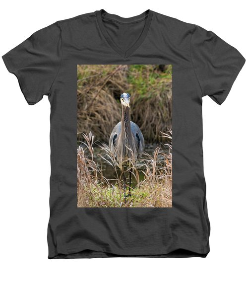 Great Blue Heron Portrait Men's V-Neck T-Shirt