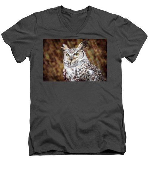 Great Horned Owl Portrait Men's V-Neck T-Shirt