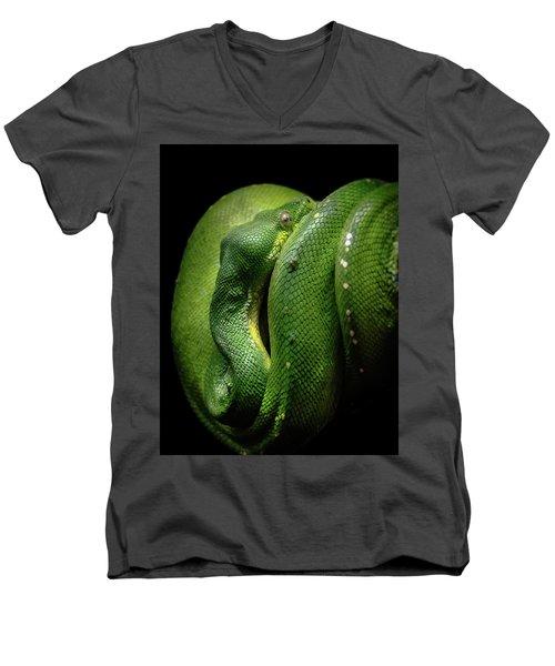 Green Tree Boa Men's V-Neck T-Shirt