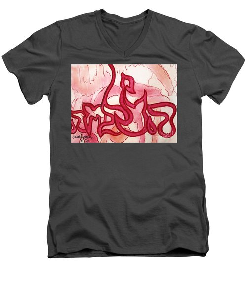 Hatzlacha Nf15-107 Men's V-Neck T-Shirt
