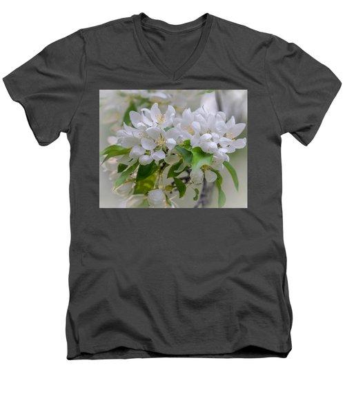 Heavenly Blossoms Men's V-Neck T-Shirt