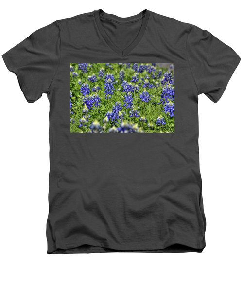 Heavenly Bluebonnets Men's V-Neck T-Shirt