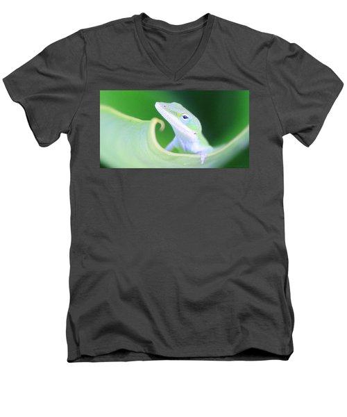 Hello, Anole. 2 Men's V-Neck T-Shirt