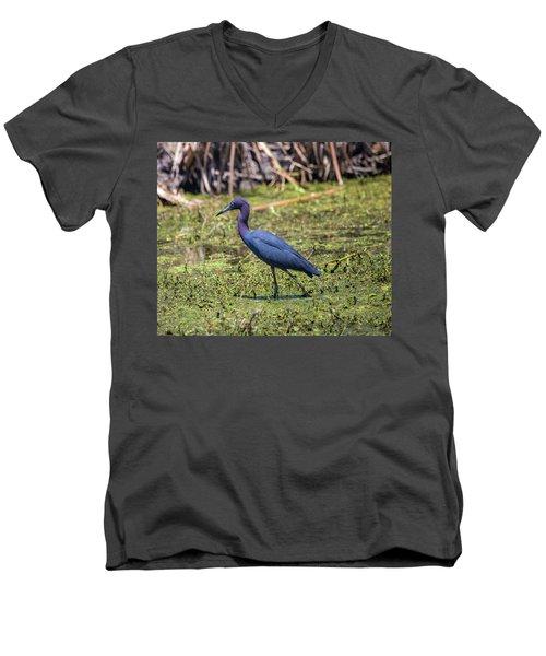 Heron Portrait Men's V-Neck T-Shirt