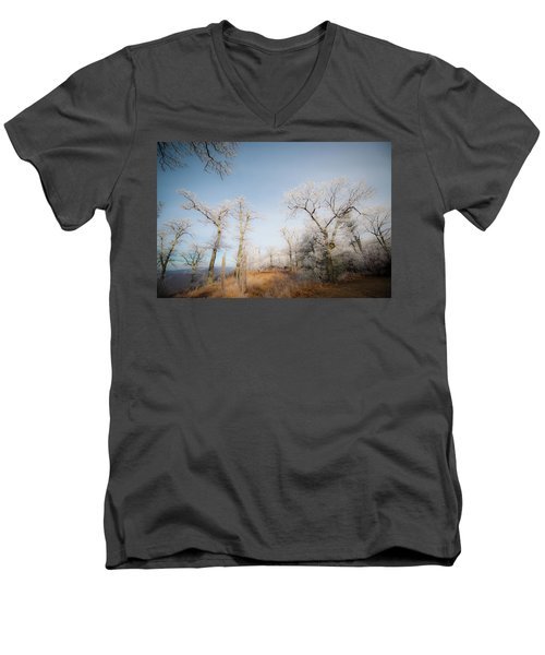 Hilltop Hoarfrost Men's V-Neck T-Shirt
