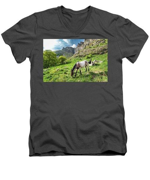 Horse On Balkan Mountain Men's V-Neck T-Shirt