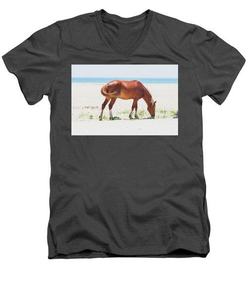 Horse On Beach Men's V-Neck T-Shirt