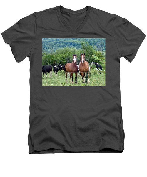 Horses And Cows.  Men's V-Neck T-Shirt