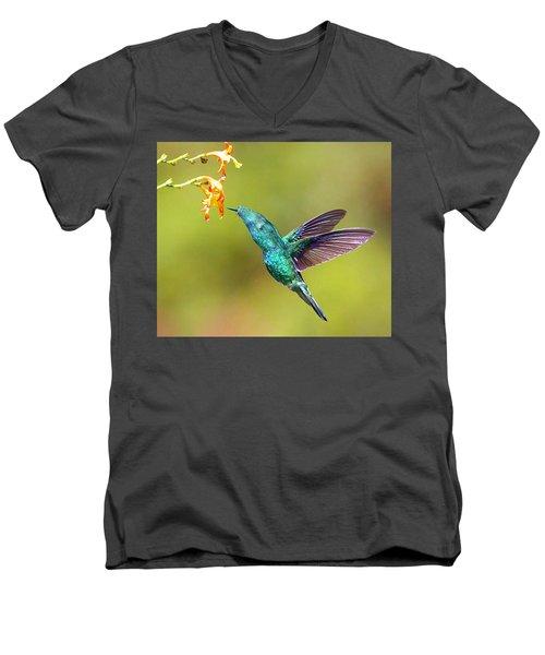 Humhum Bird Men's V-Neck T-Shirt