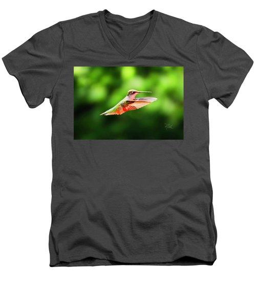 Hummingbird Flying Men's V-Neck T-Shirt