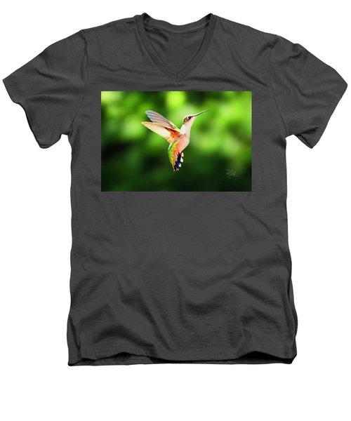 Hummingbird Hovering Men's V-Neck T-Shirt