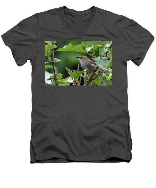 Hunter's Cisticola Men's V-Neck T-Shirt