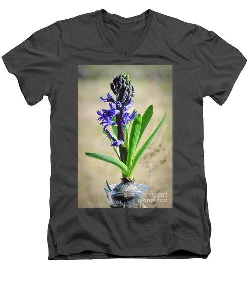 Hyacinth Men's V-Neck T-Shirt