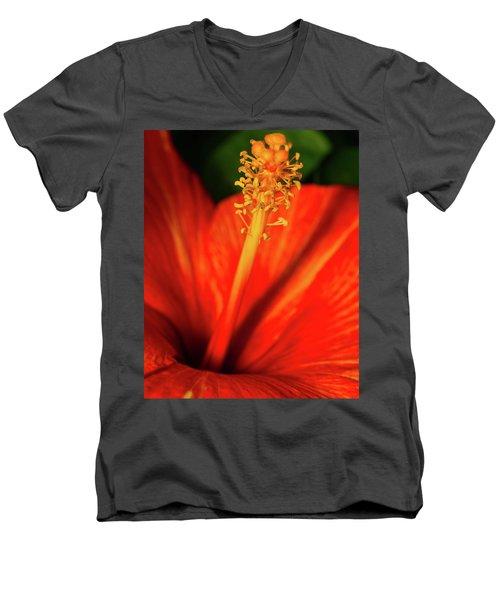 Into A Flower Men's V-Neck T-Shirt