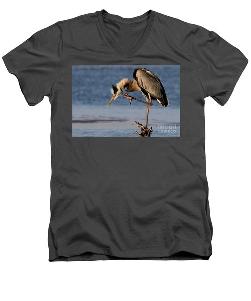Itchy - Great Blue Heron Men's V-Neck T-Shirt