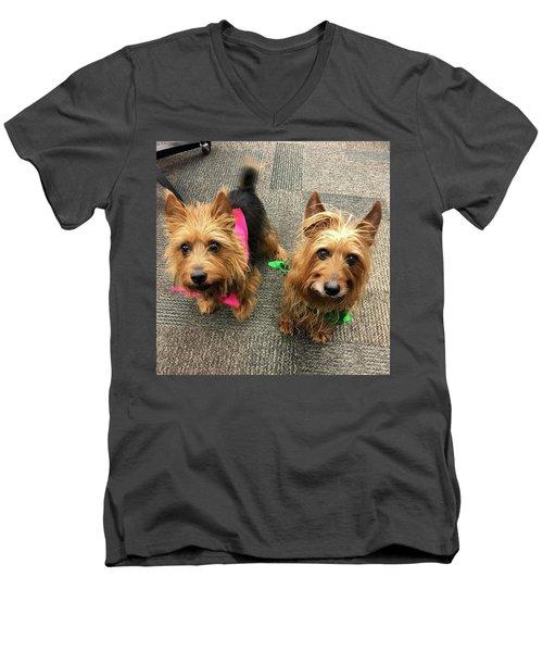 Jack And Lily Men's V-Neck T-Shirt