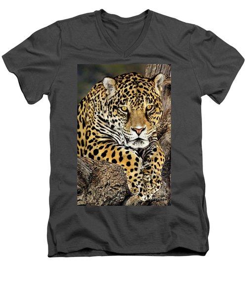 Jaguar Portrait Wildlife Rescue Men's V-Neck T-Shirt