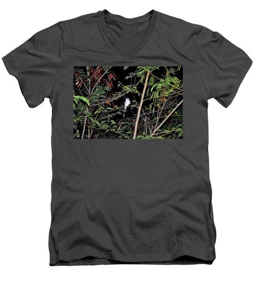 Kingbird At Night Men's V-Neck T-Shirt