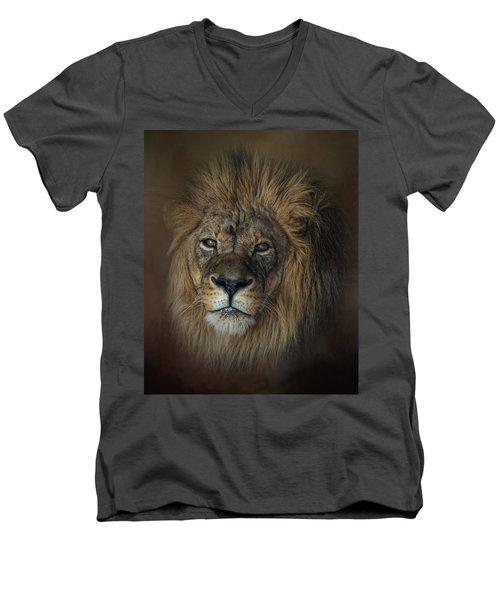 King's Gaze Men's V-Neck T-Shirt