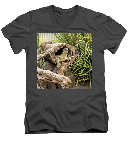 Lace Monitor During The Day. Men's V-Neck T-Shirt
