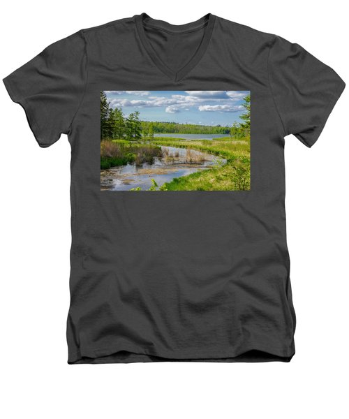 Lake Itasca Beauty Men's V-Neck T-Shirt