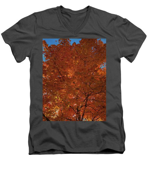 Leaves Of Fire Men's V-Neck T-Shirt