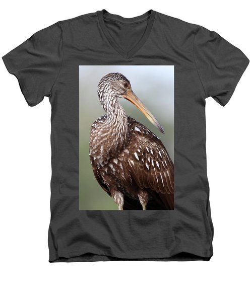 Limpkin Men's V-Neck T-Shirt