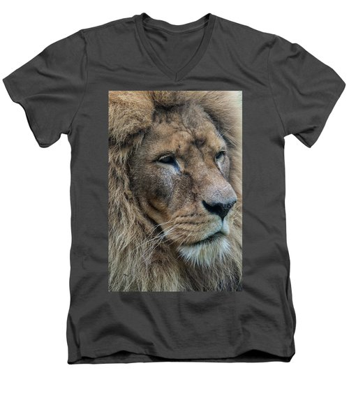 Men's V-Neck T-Shirt featuring the photograph Lion by Anjo Ten Kate
