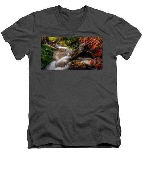 Little Deer Creek Autumn Men's V-Neck T-Shirt