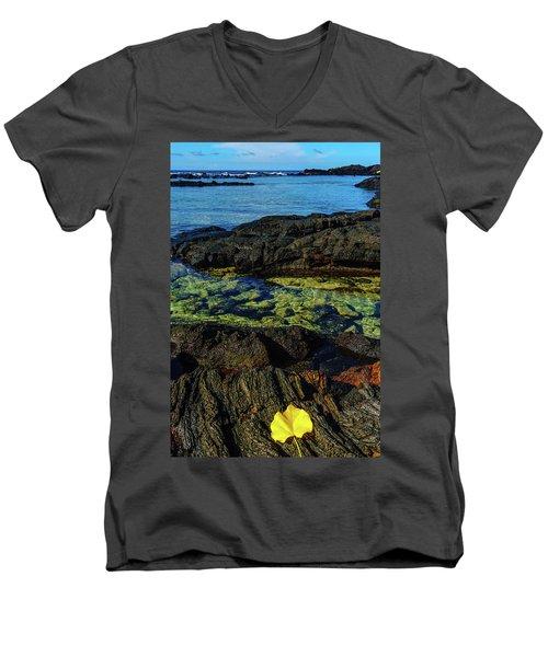 Lonely Leaf Men's V-Neck T-Shirt