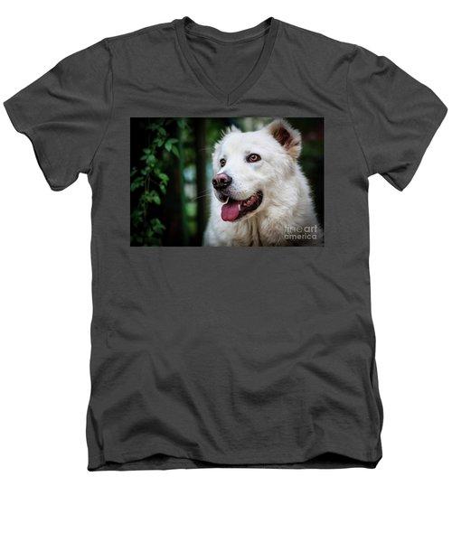 Looking Men's V-Neck T-Shirt