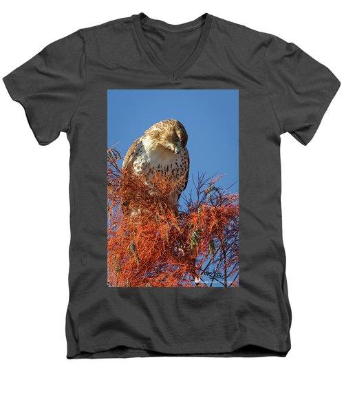 Looking Down Men's V-Neck T-Shirt