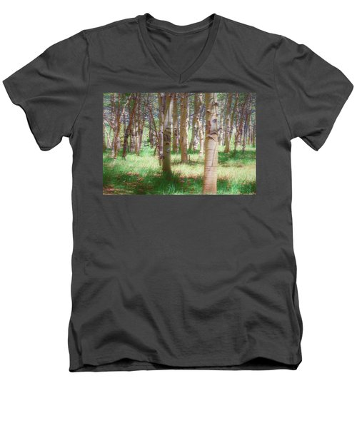 Lost In The Woods - Kenosha Pass, Colorado Men's V-Neck T-Shirt