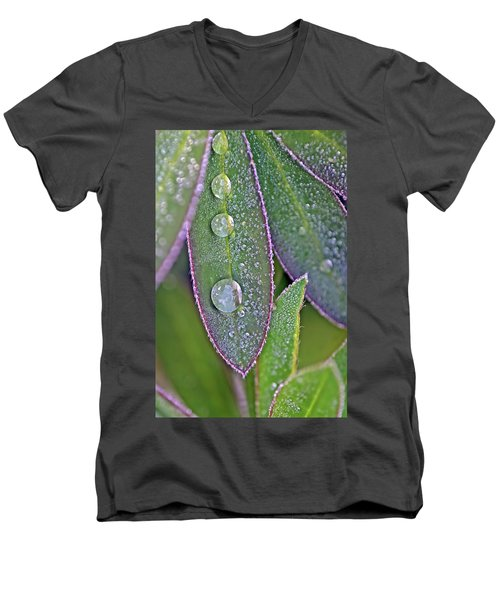 Lupin Leaves And Waterdrops Men's V-Neck T-Shirt