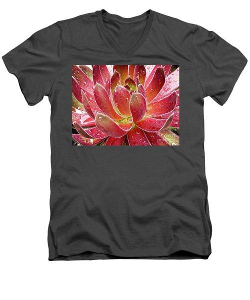 Magical Succulent Men's V-Neck T-Shirt