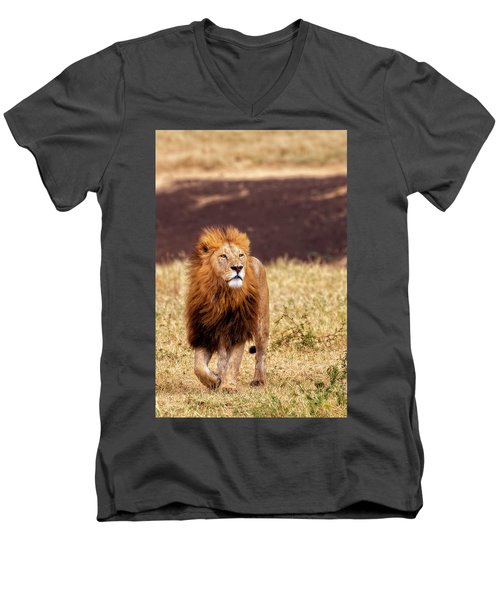Majesty Men's V-Neck T-Shirt