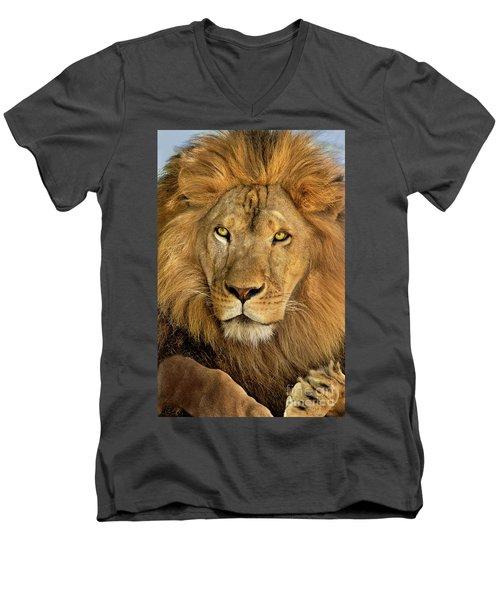 Male African Lion Portrait Wildlife Rescue Men's V-Neck T-Shirt
