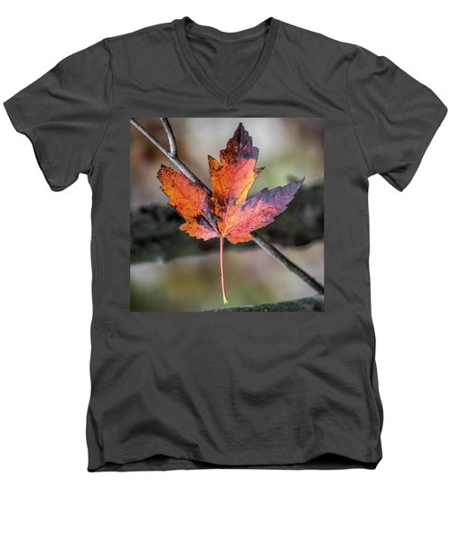 Maple 1 Men's V-Neck T-Shirt