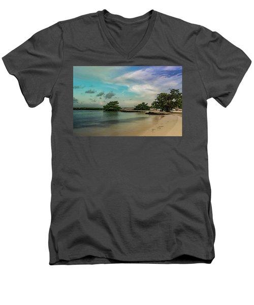 Mayan Shore 2 Men's V-Neck T-Shirt