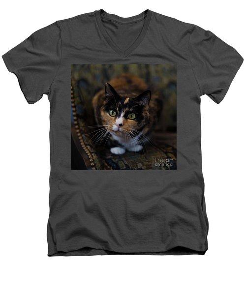 Mischa Men's V-Neck T-Shirt