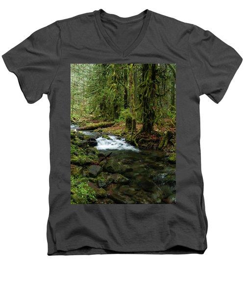 Mossy Cascade Men's V-Neck T-Shirt